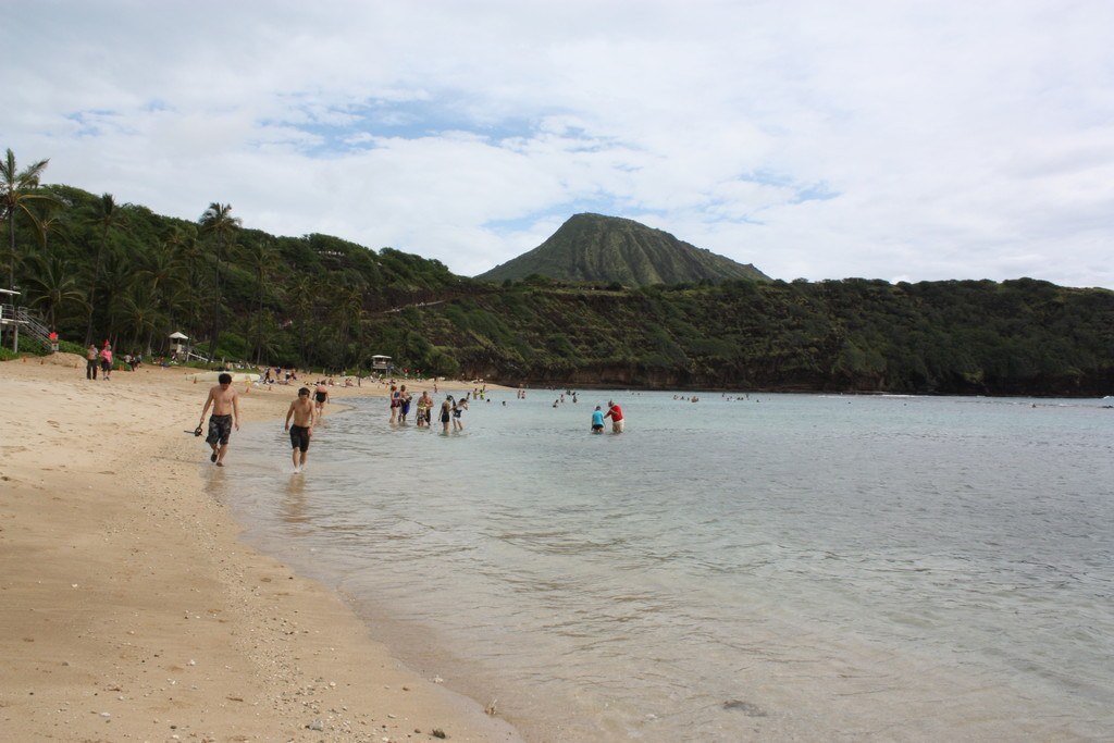 Fazer mergulho na Baía Havaiana de Hanauma!!