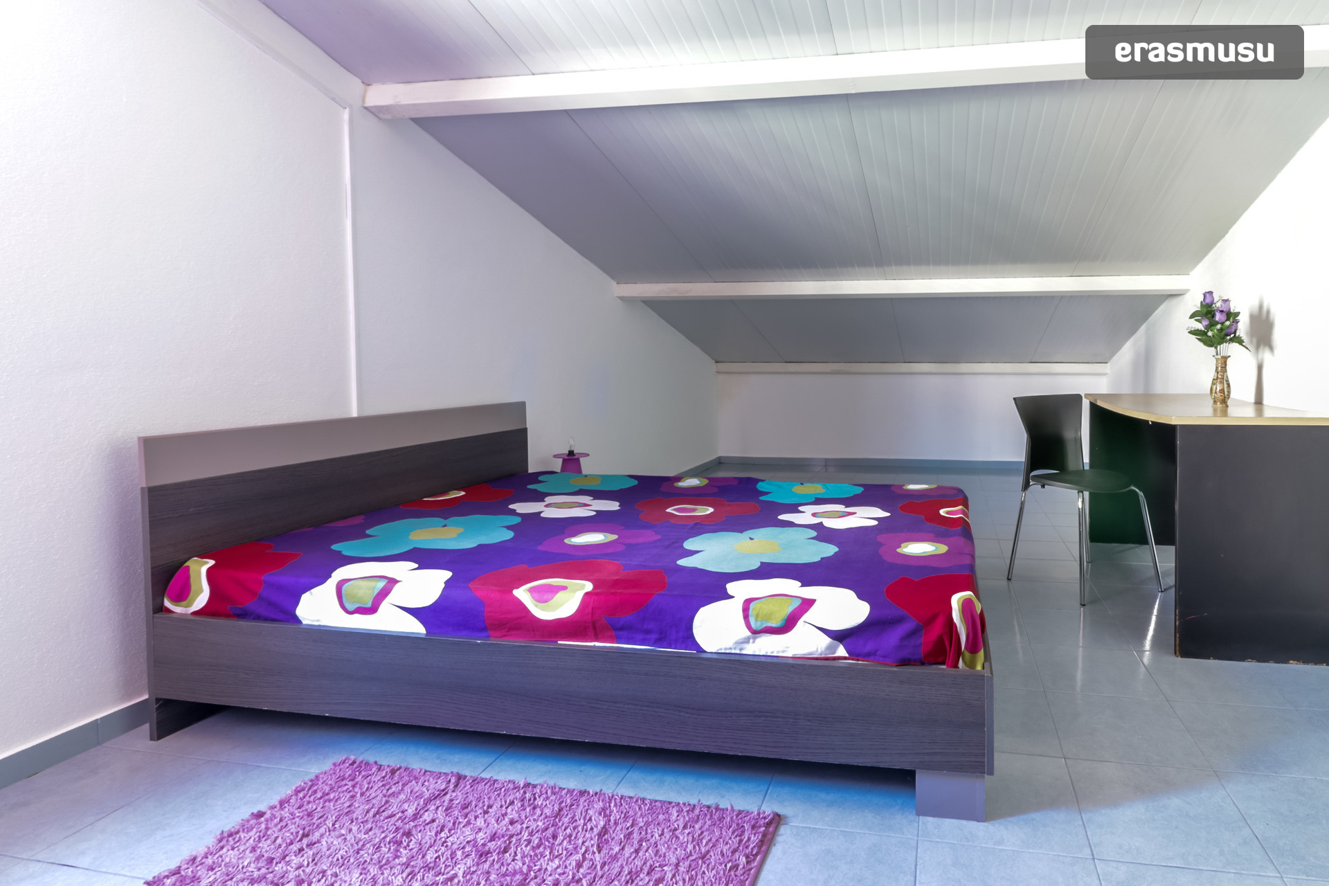 Female student residence/ Residencia de estudantes feminina - Subway/Metro Reboleira (Lisbon)