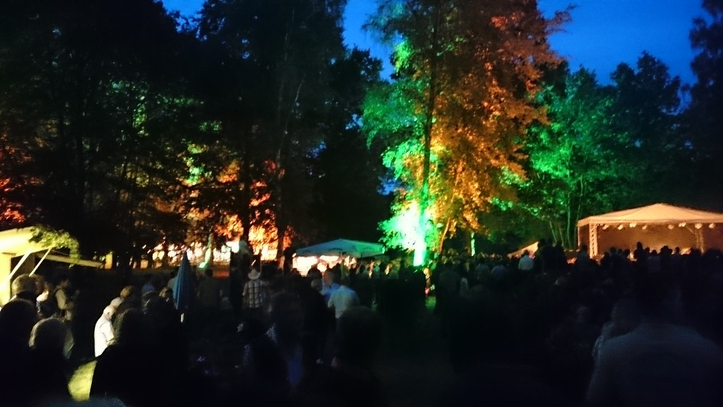 Festival in the Hometown