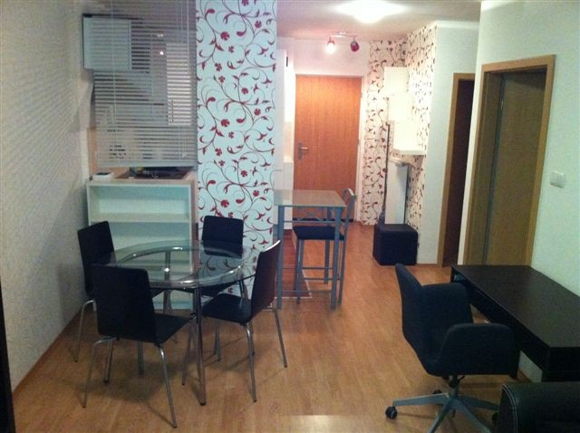 Friendly spacious one bedroom apartment next to mcdaniel college flat rent budapest for Spacious one bedroom apartment