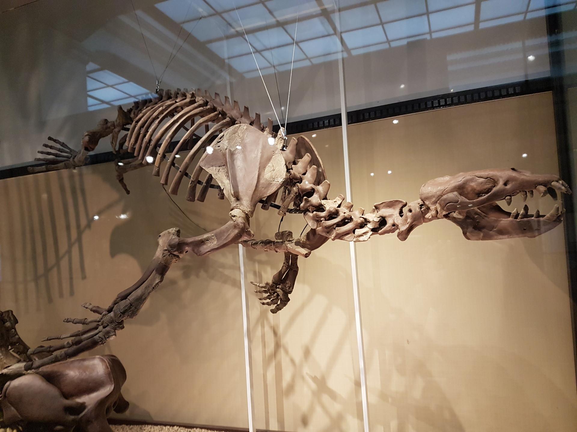 geeking-tokyo-national-museum-science-37