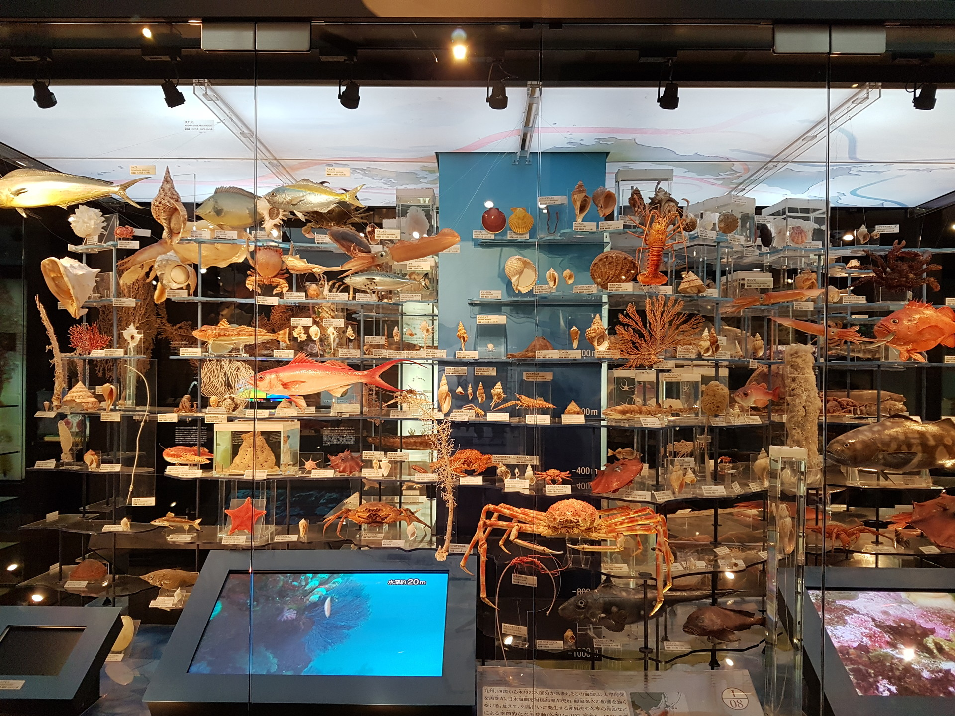geeking-tokyo-national-museum-science-4d