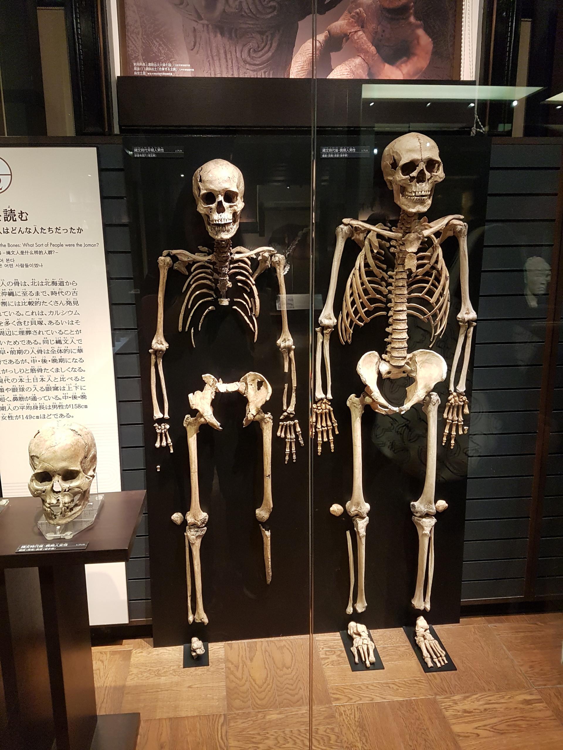 geeking-tokyo-national-museum-science-5c