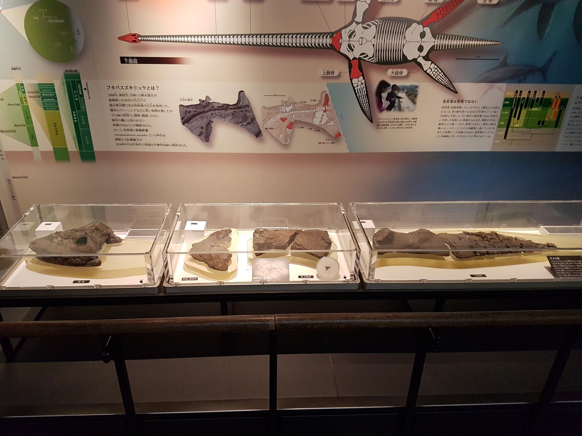 geeking-tokyo-national-museum-science-8b
