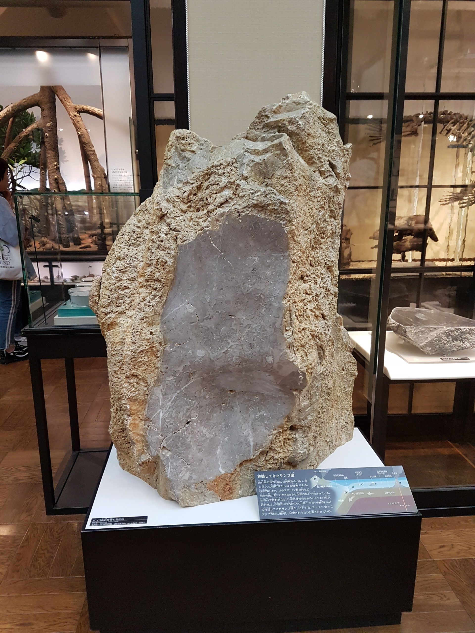geeking-tokyo-national-museum-science-eb
