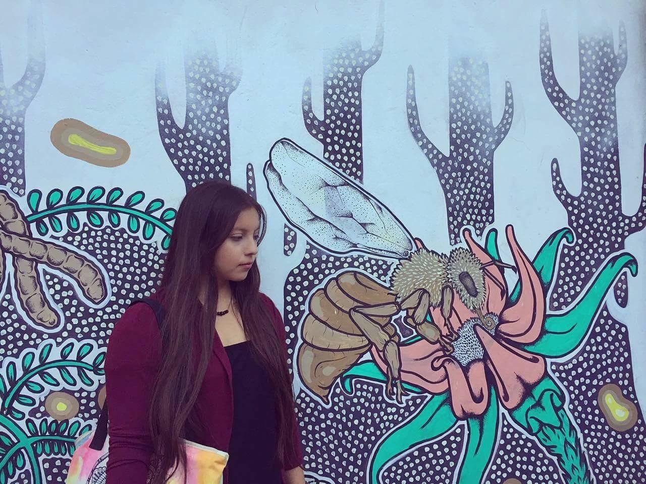 Graffitis Bogotanos.