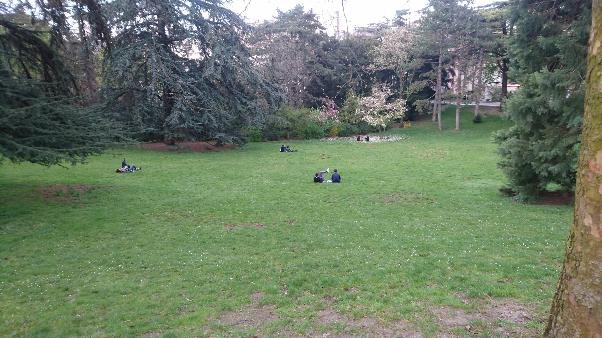 Green space; not much to see
