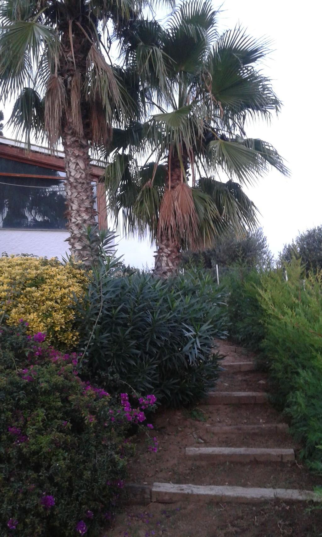 Soleada habitaci n en casa bien equipada incre bles vistas piscina jard n buena convivencia - Casa jardin badalona ...