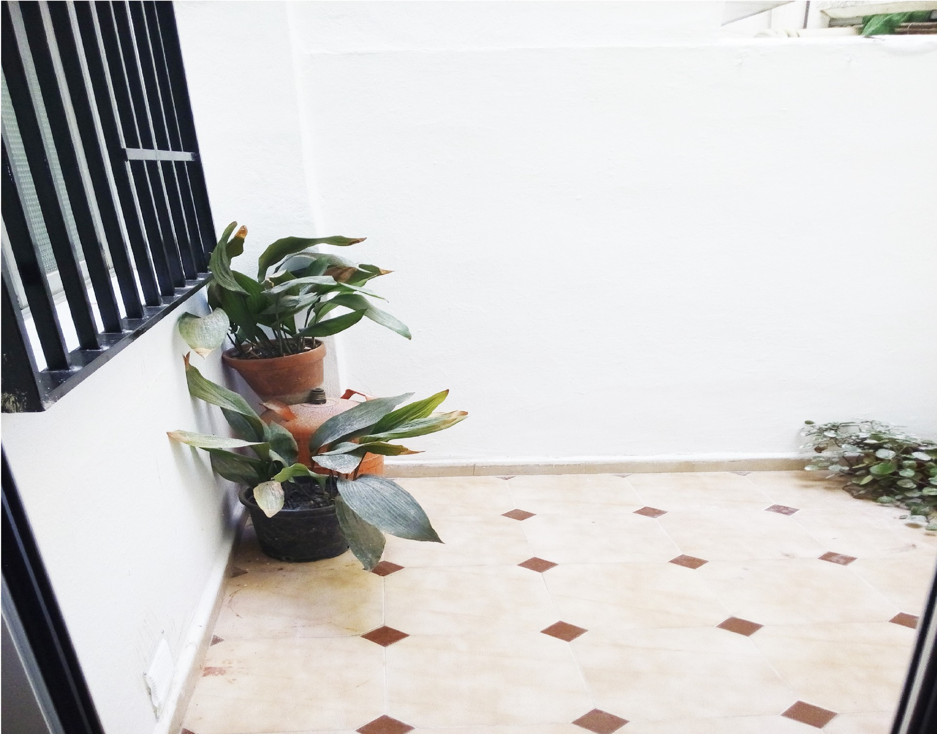 Habitacion con terraza privada cerca universidad de burjassot alquiler habitaciones valencia - Alquiler de pisos en burjassot ...