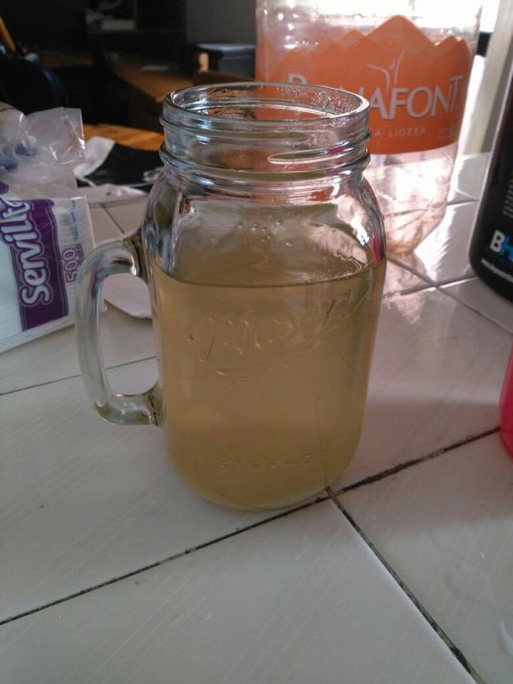 Haz tu propia bebida probi tica fermentada hecha en casa - Haz tu propia casa ...