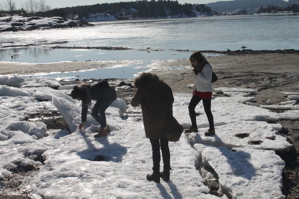 Hovedøya, a pequena ilha situada em Oslo fijord