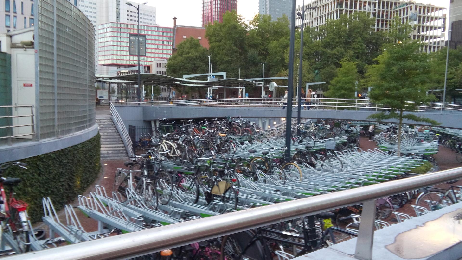 C Mo Obtener Y Mantener Una Bici En Rotterdam Blog Erasmus  # Muebles Rotterdam