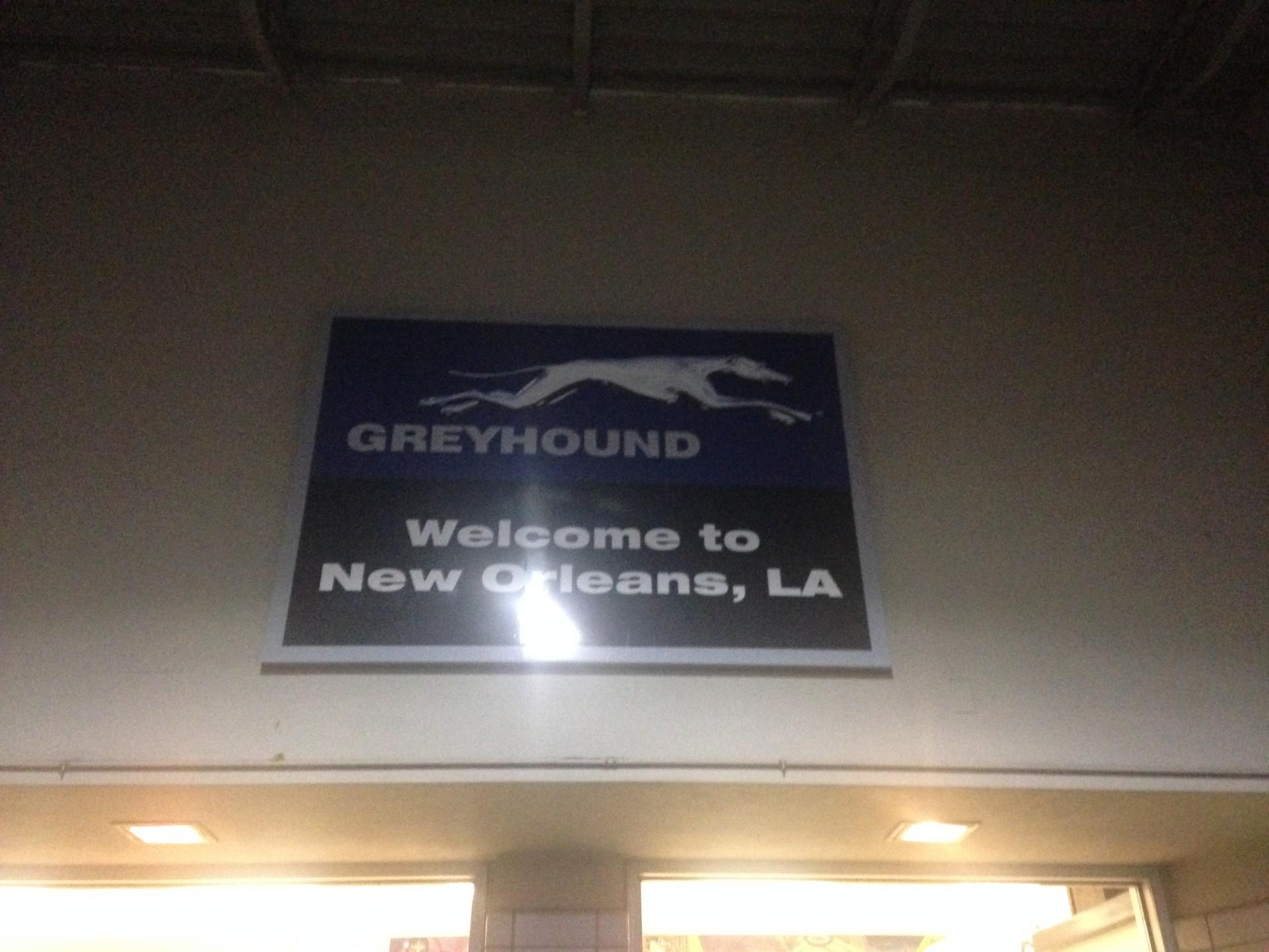 How to survive a Greyhound bus trip?   Erasmus tips