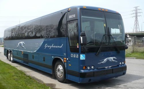 How to survive a Greyhound bus trip? | Erasmus tips