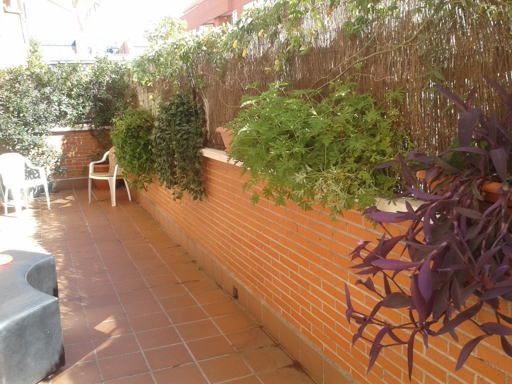 huge room&private bathroom, terrace, garden, swiming pool, tutoring ...
