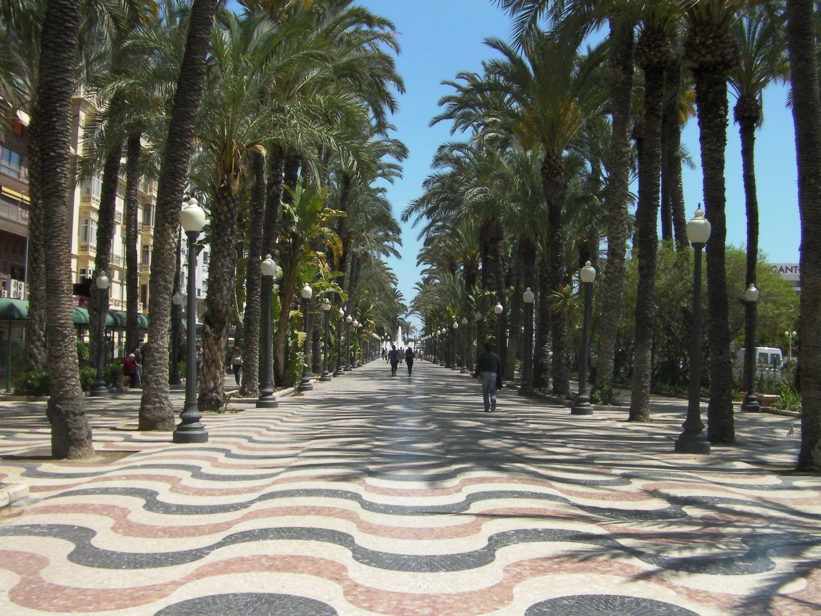 Alicante incontri