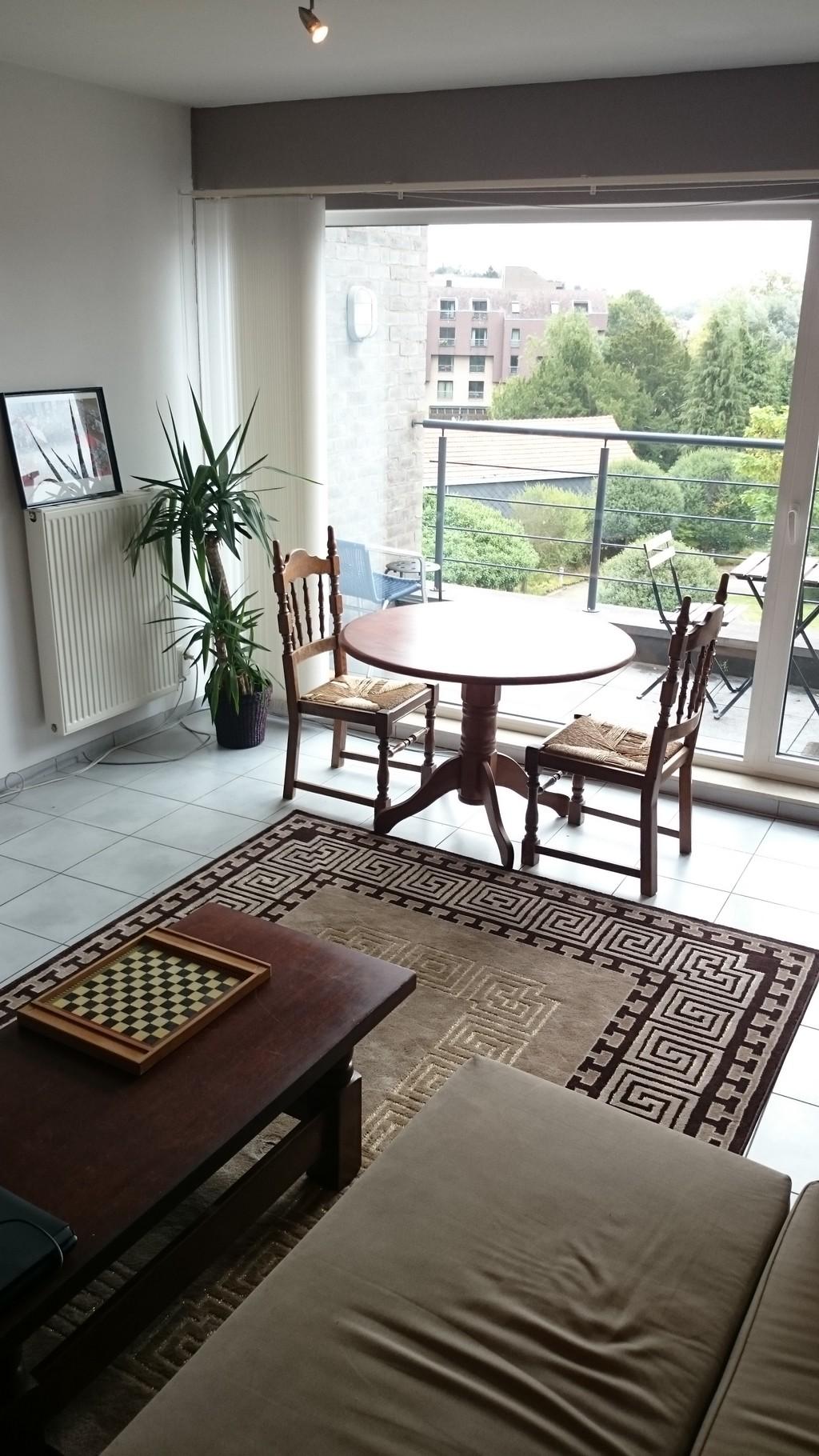 im-looking-roommate-share-cozy-modern-duplex-apartment-e260119da8c4430ed86c0f846debf157