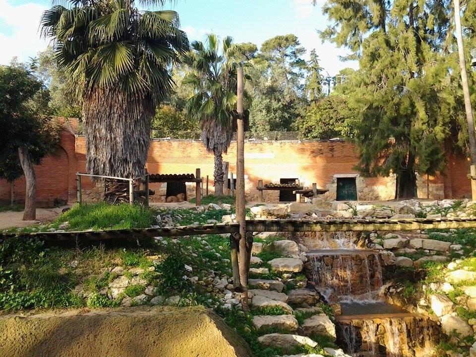 jardim-zoologico-lisboa-oceanarium-4b1d0