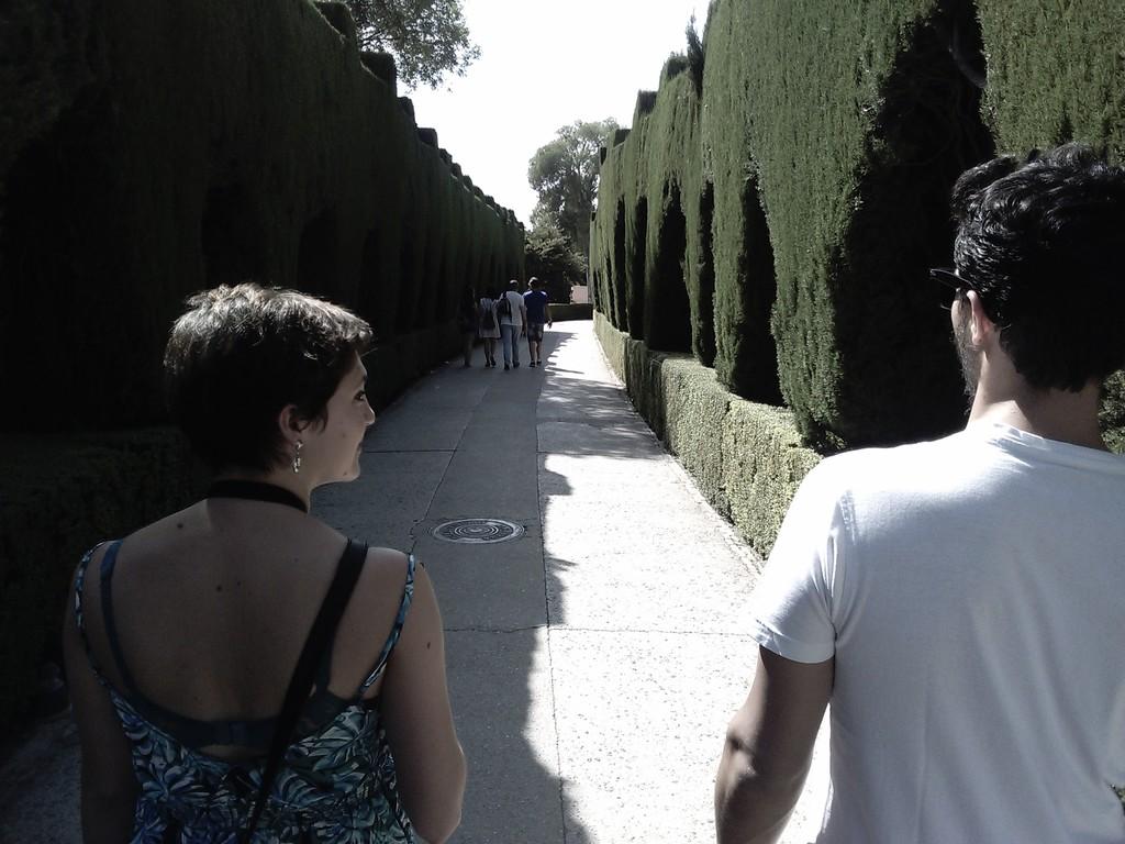 la-alhambra-entrada-comienzo-676b14c0b82