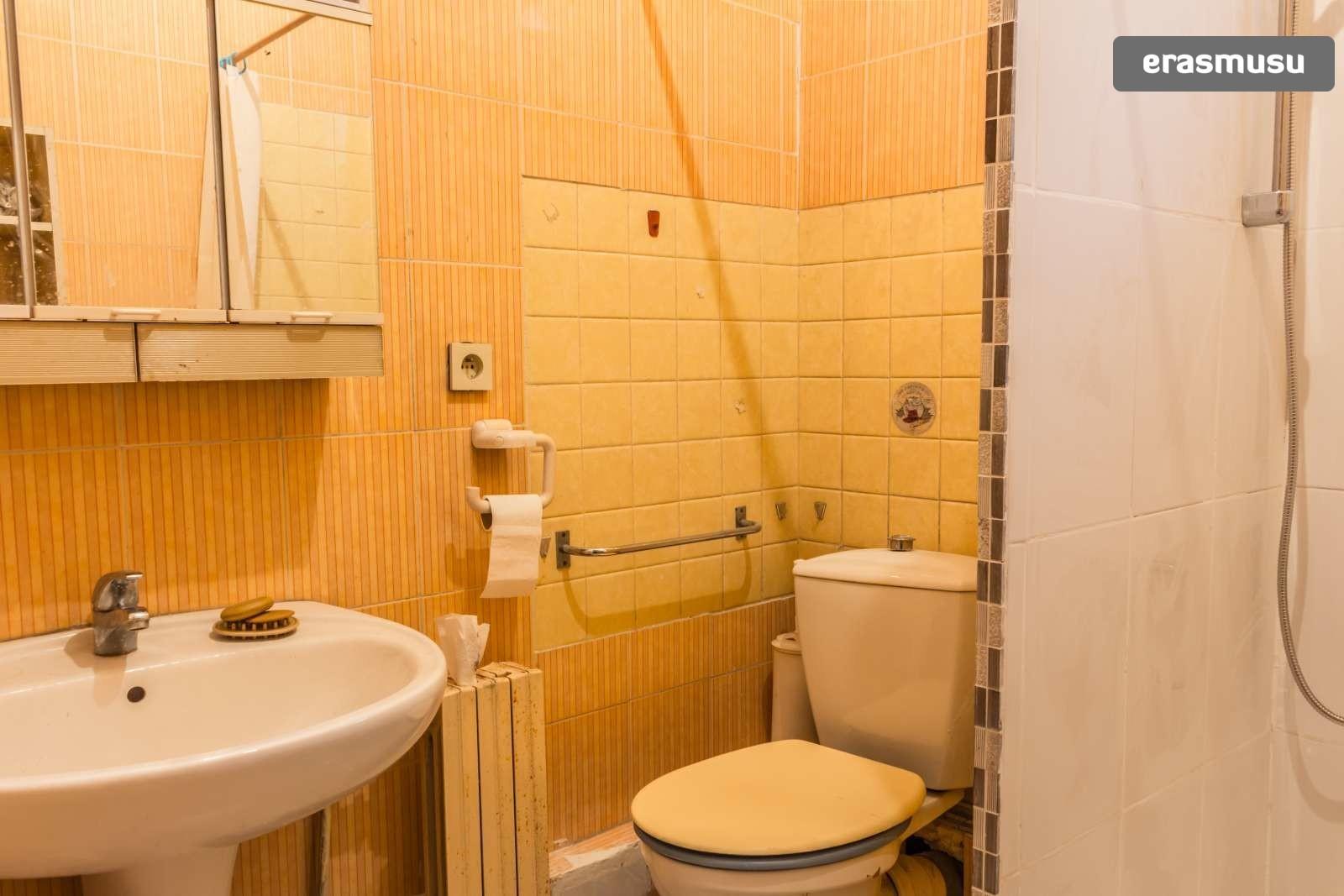 large-1-bedroom-apartment-dryer-rent-villeurbanne-area-815ed995d