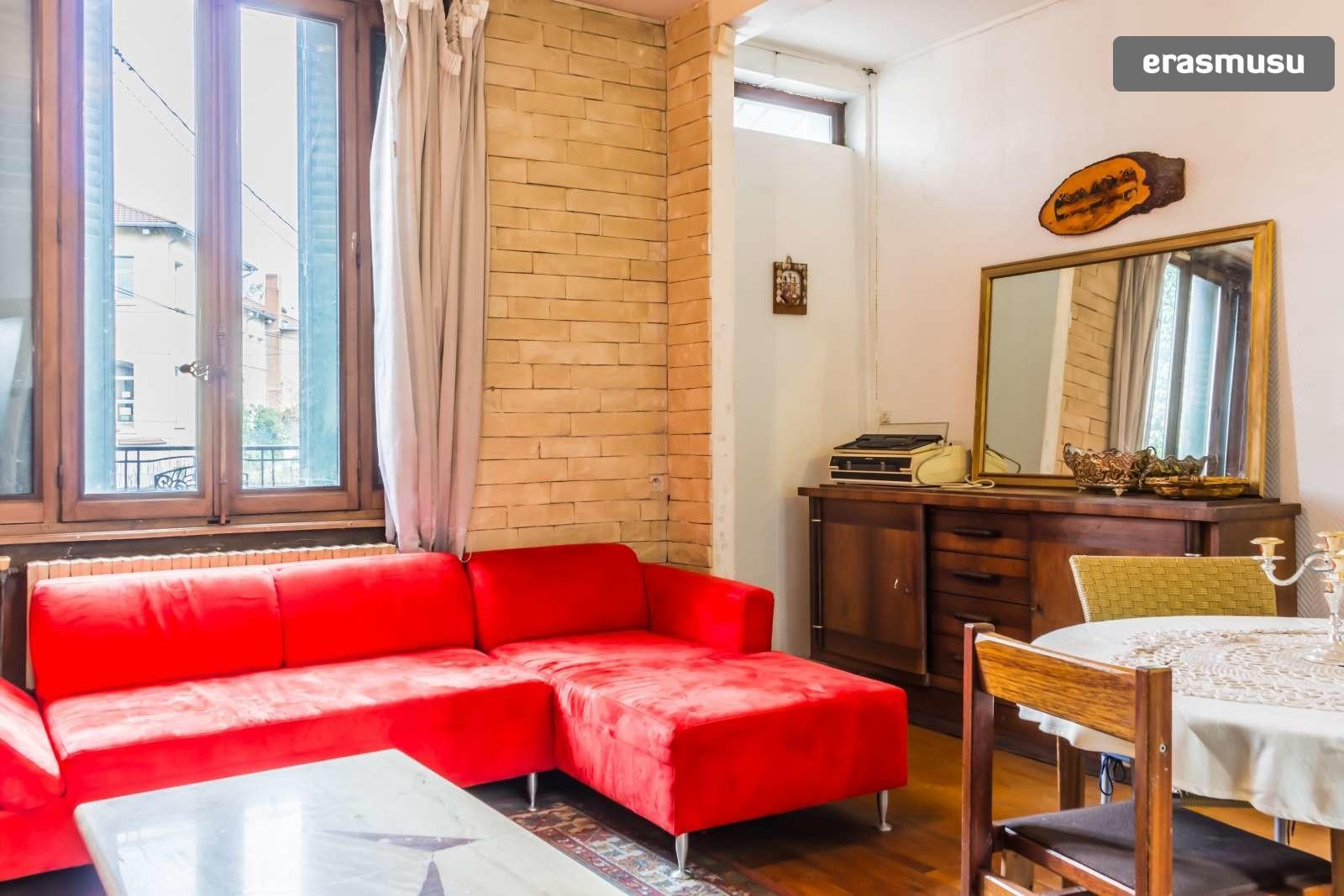 large-1-bedroom-apartment-dryer-rent-villeurbanne-area-fcc89d56f