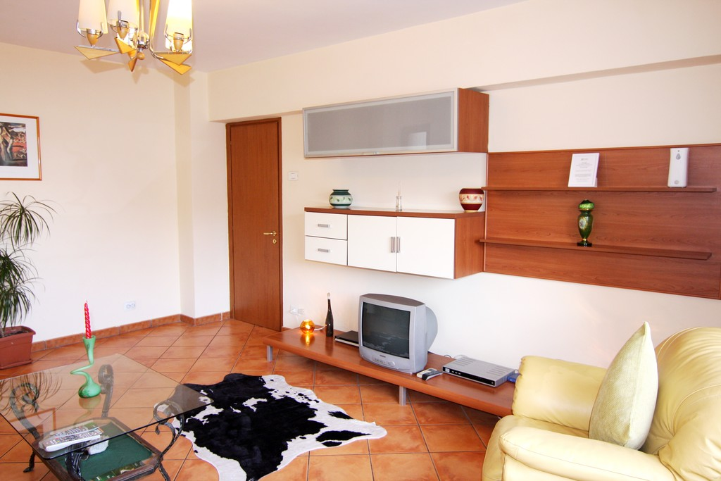 Large One Bedroom Fully Furnished Apartment Center