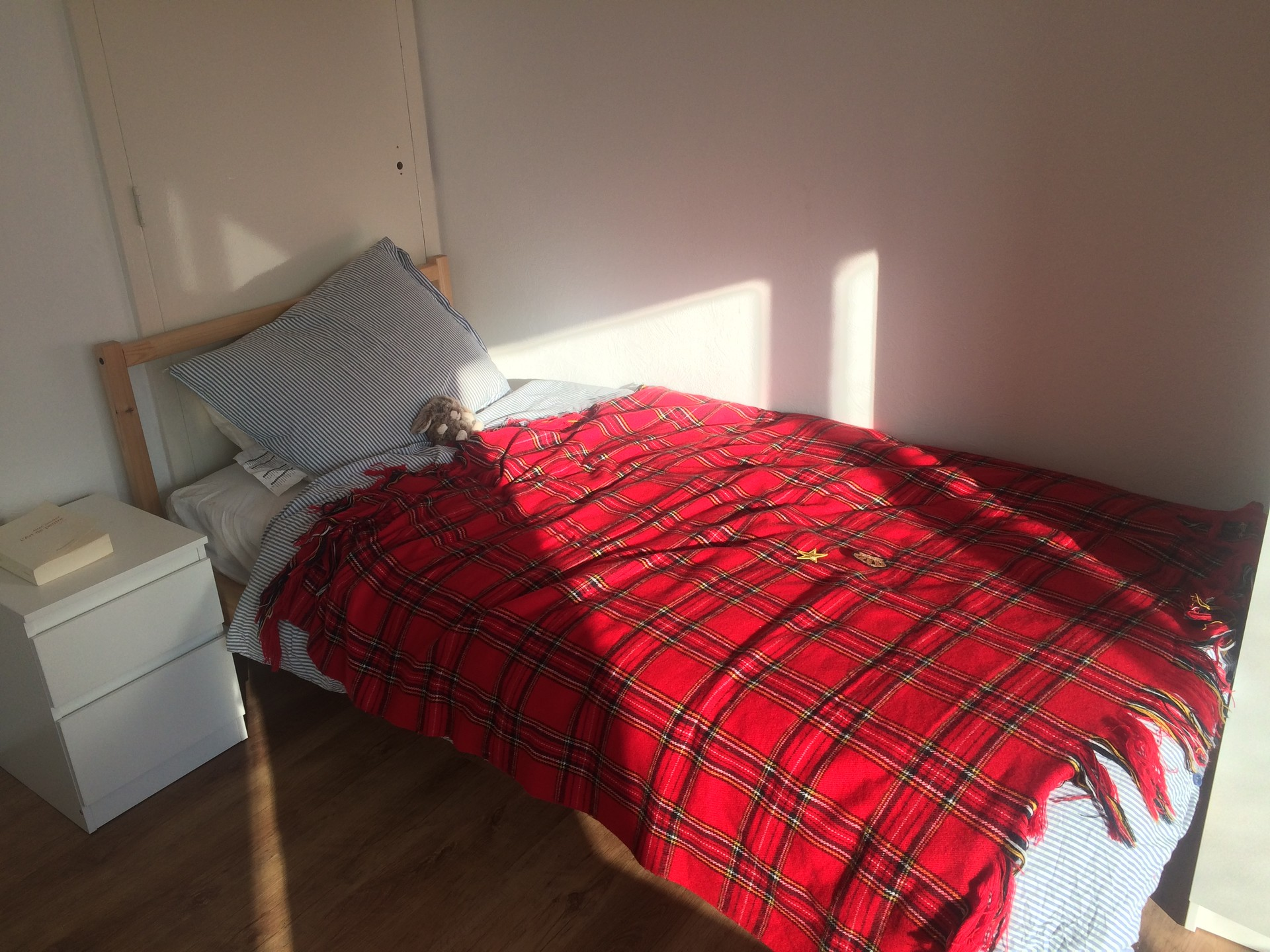 large-sunny-room-south-enschede-d173c97f641ab8dbff2ce1d822947db4