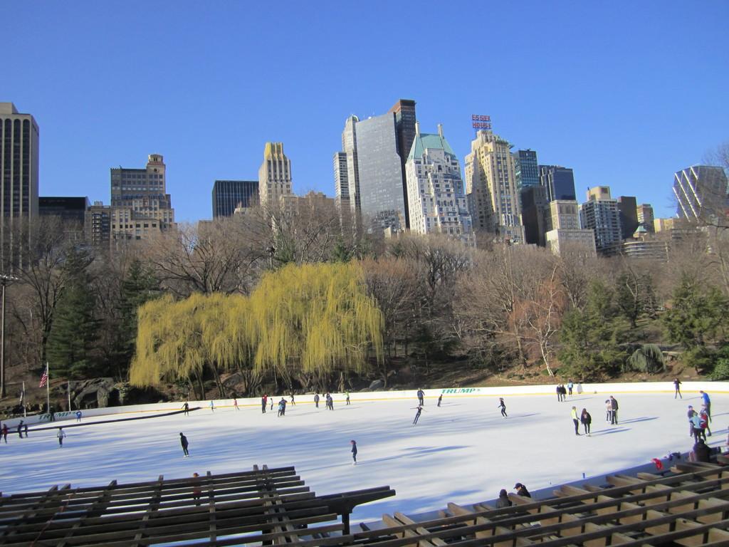 Central park quoi voir new york for B b new york centro