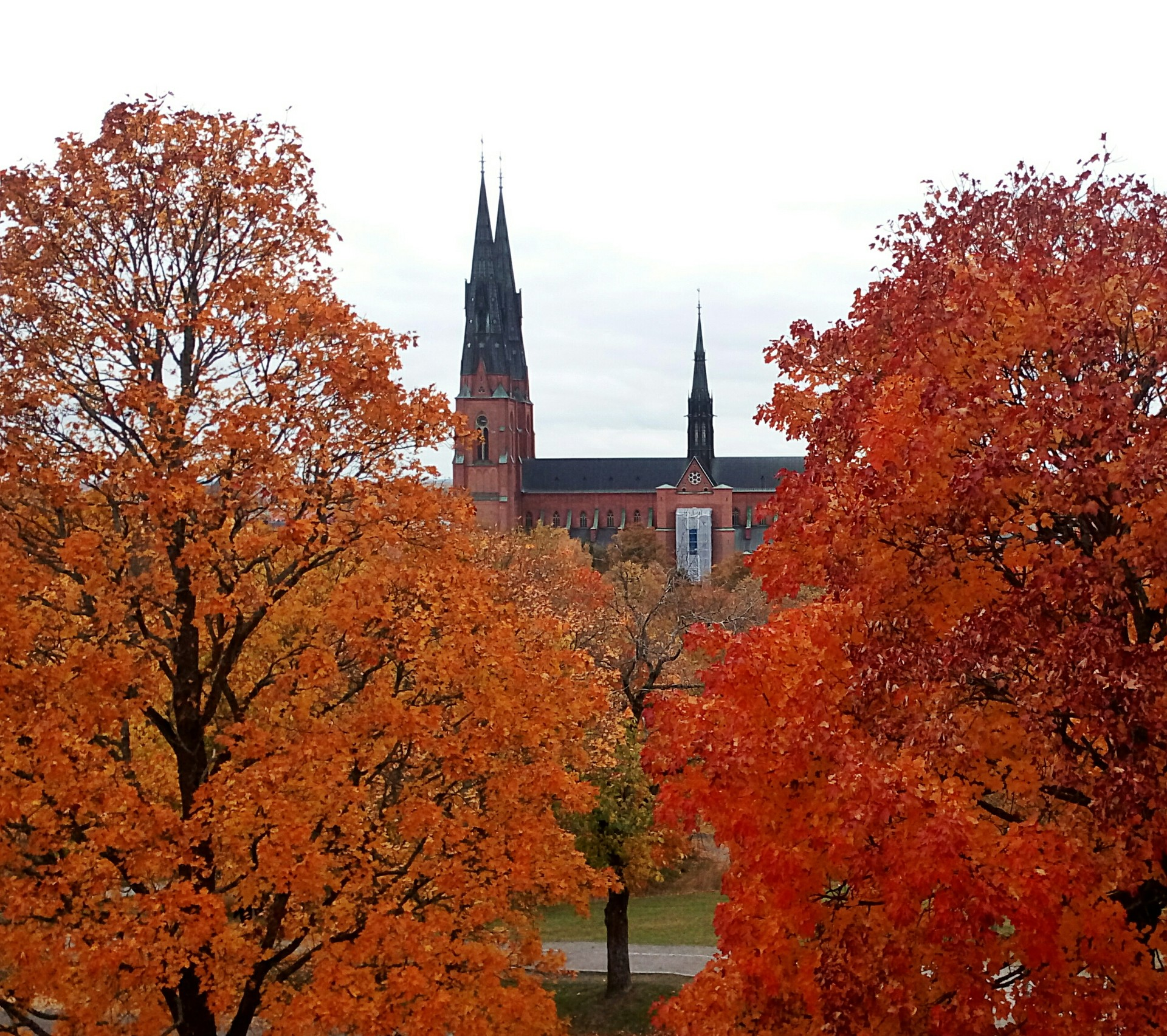 L'expérience Erasmus à Borlänge en Suède de Tine