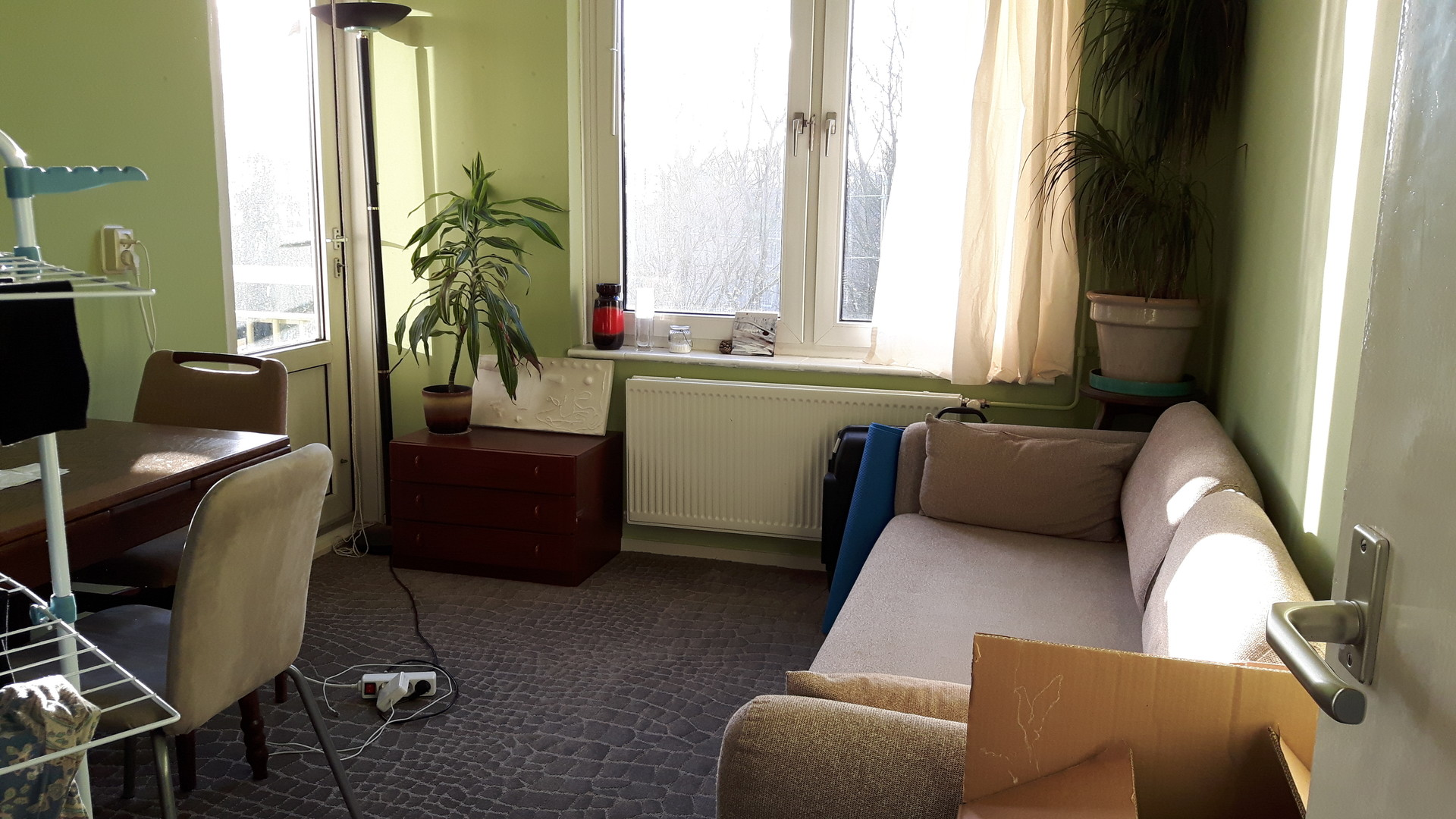 lovely-room-quiet-vegan-household-880d15a37f450299162eb743be445fb4