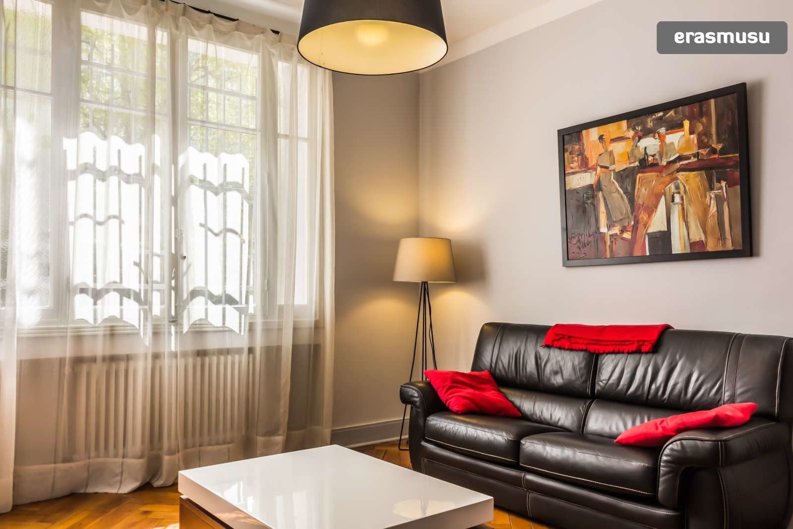 luxurious-fully-furnished-1-bedroom-apartment-rent-b0ba356f4a029
