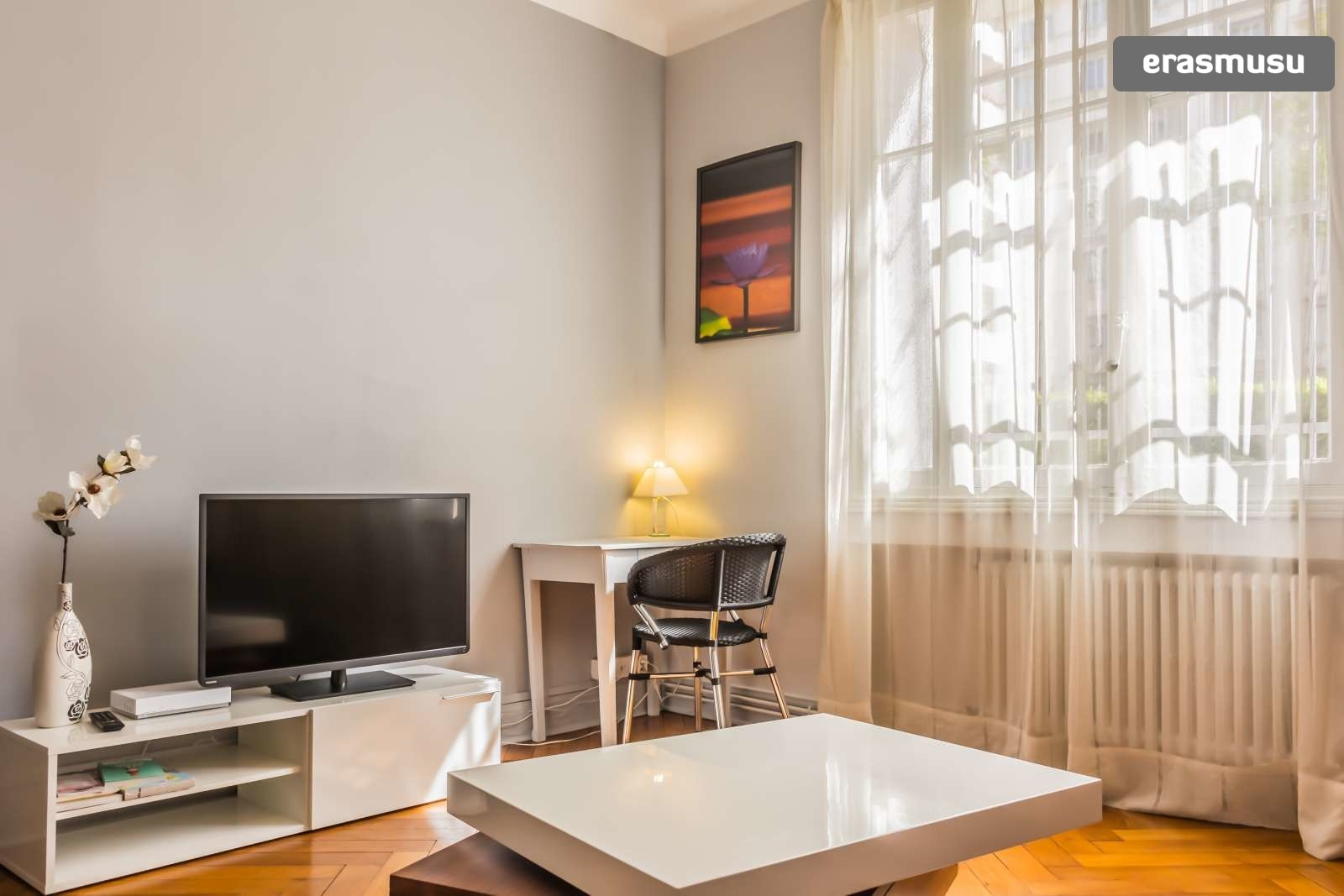 luxurious-fully-furnished-1-bedroom-apartment-rent-c125dc85a3ffe