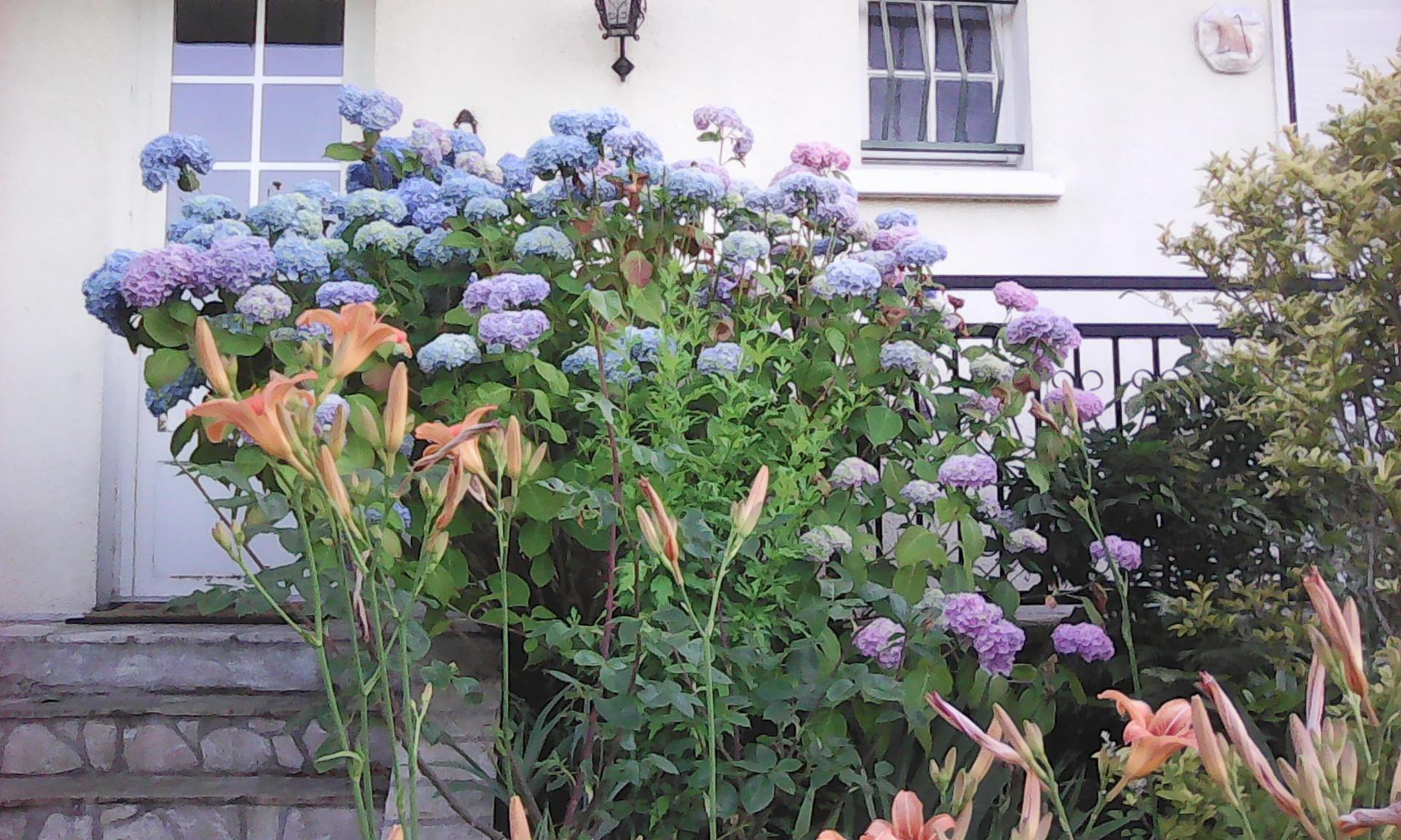 Chambre dans maison avec jardin proche de paris location for Location avec jardin paris