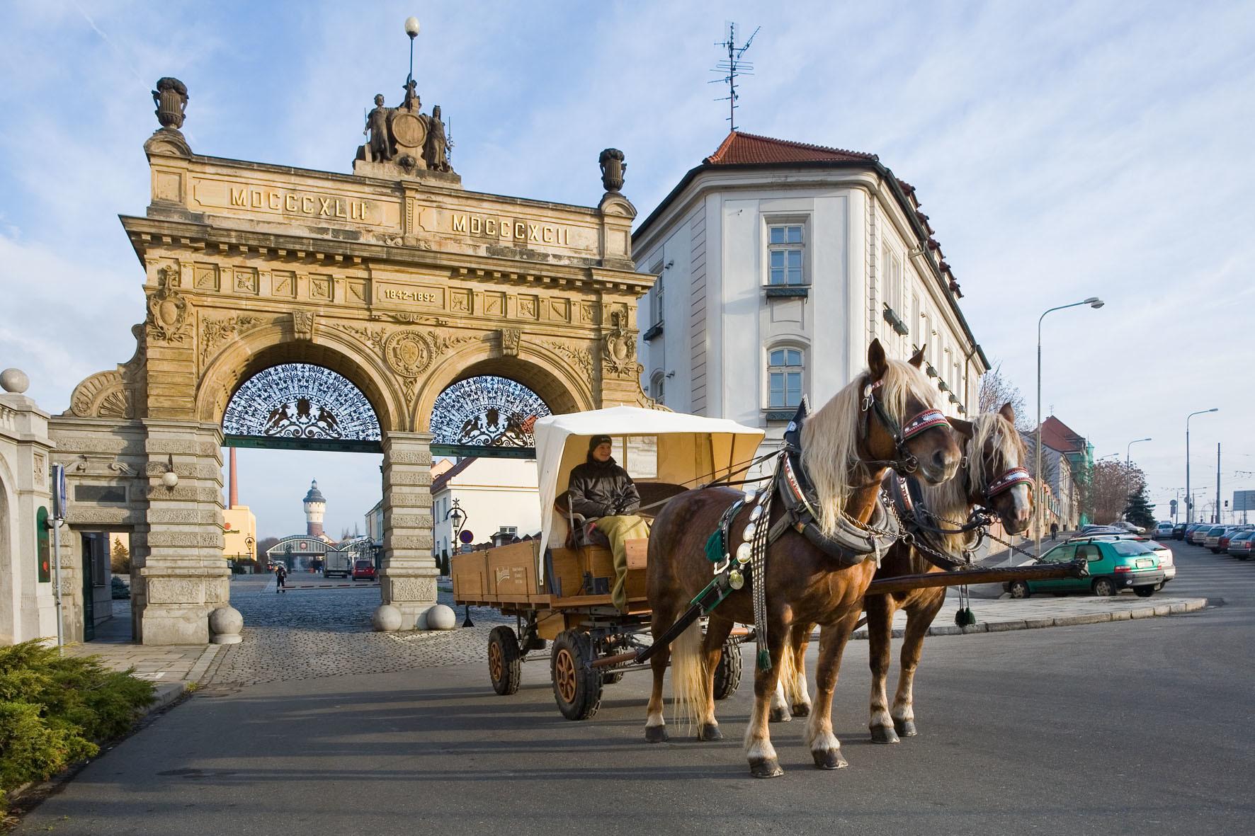 Mehmetcan'ın Plzen, Çek Cumhuriyeti'nde Erasmus Deneyimi