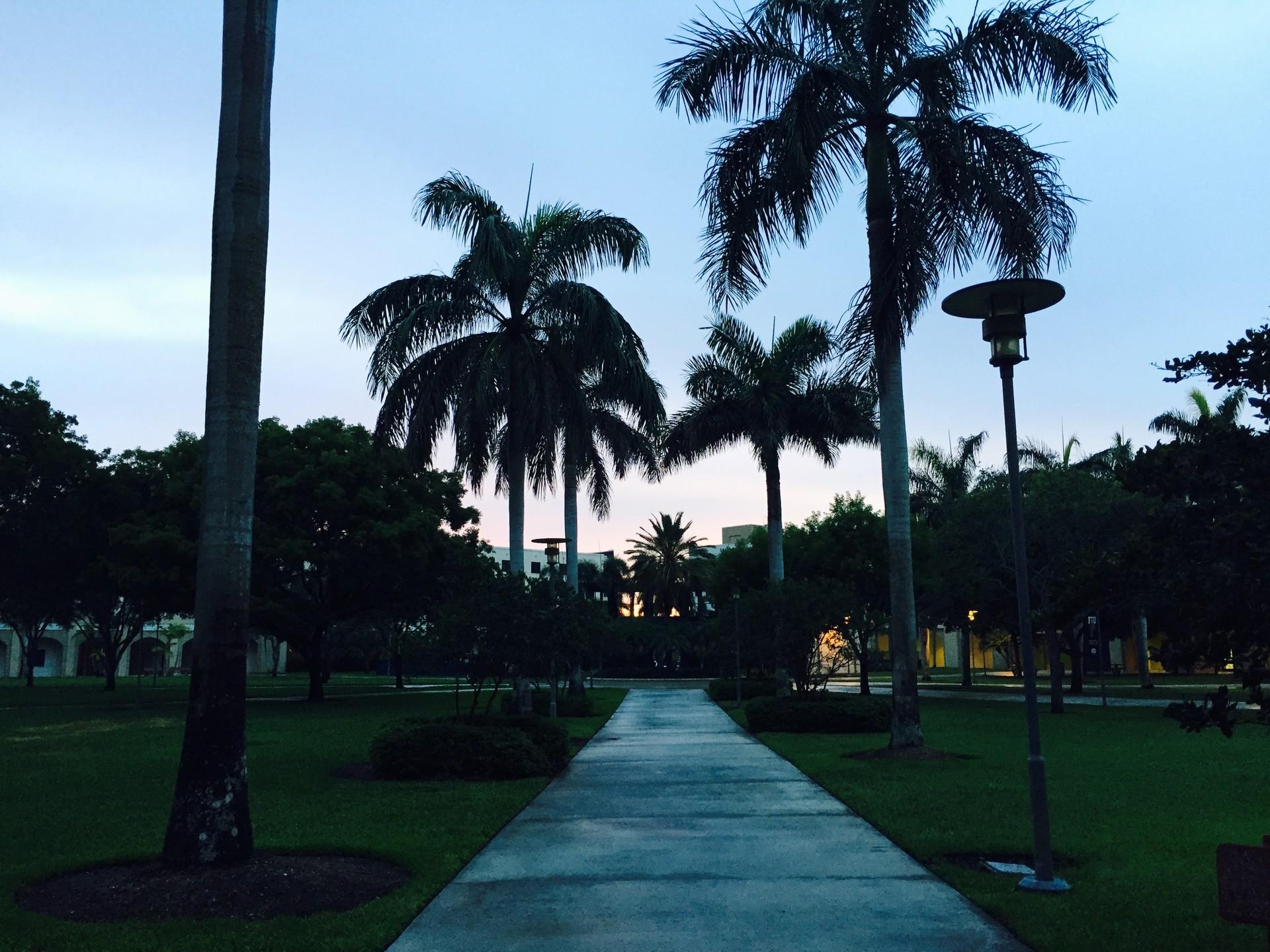 Miami, segunda vez que voy