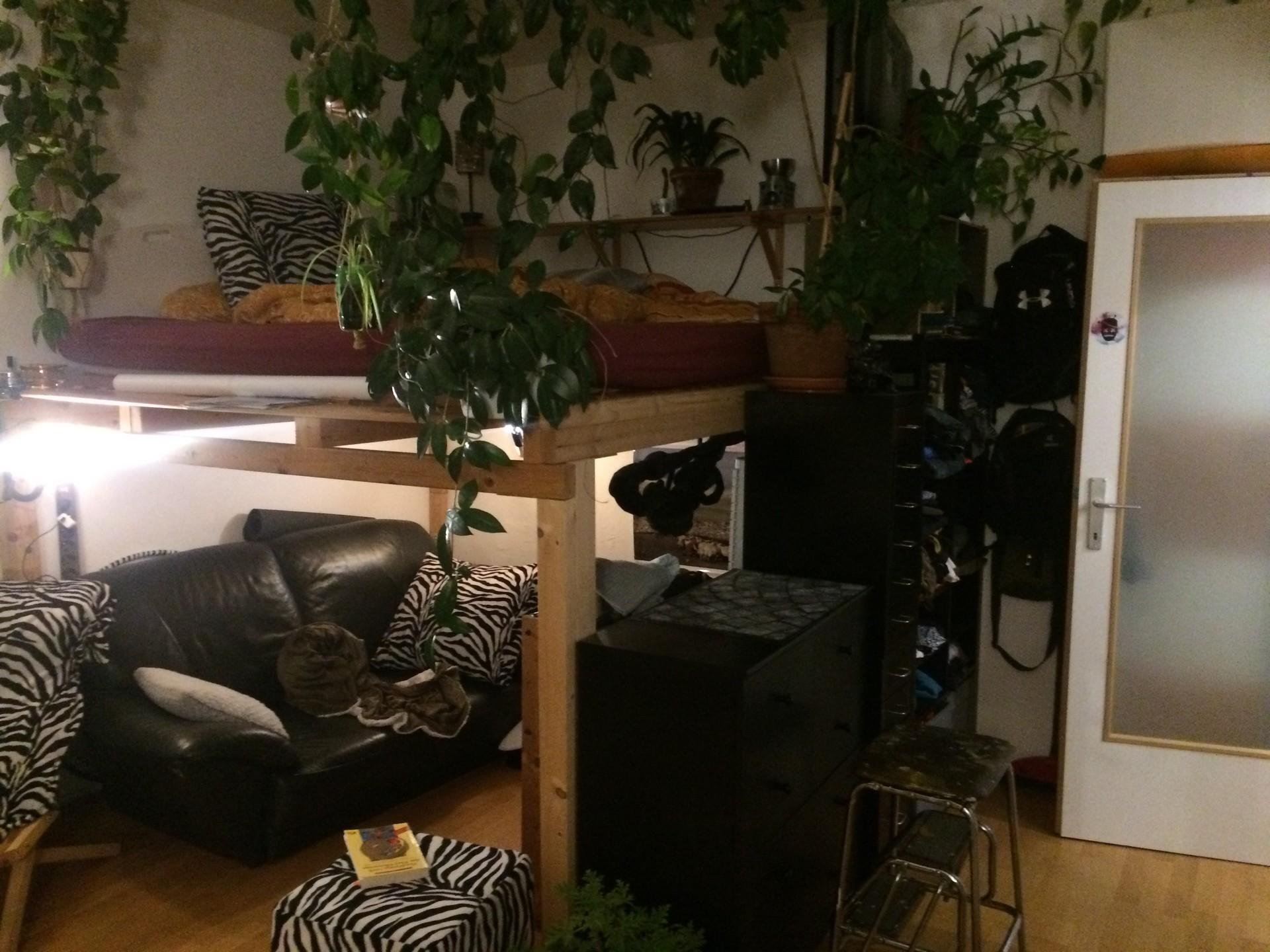 mini-apartment-0777f5a6e869ba7e39bc448e9fee95f2