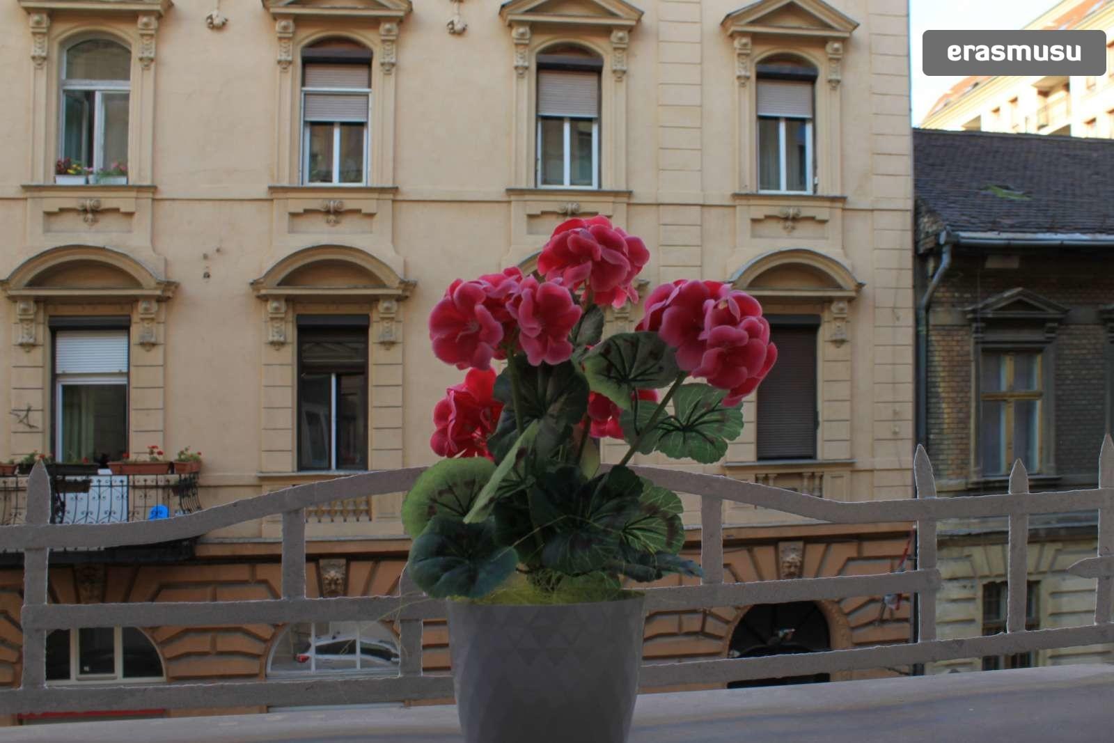 Budapest,  Szondi u.