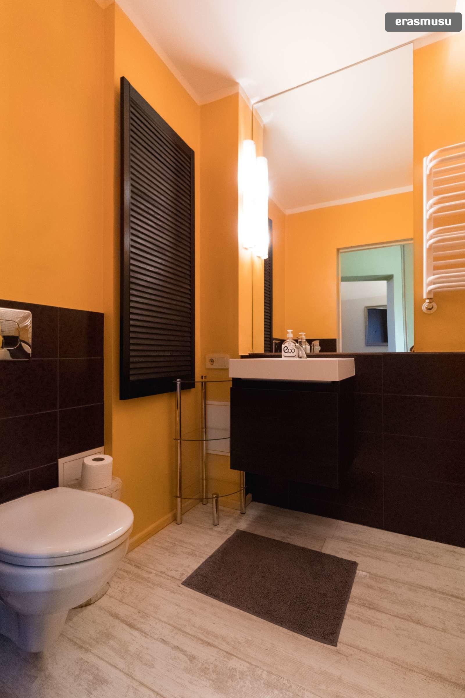 modern-studio-apartment-rent-maskavas-forstate-f67e5325fdb771ffe
