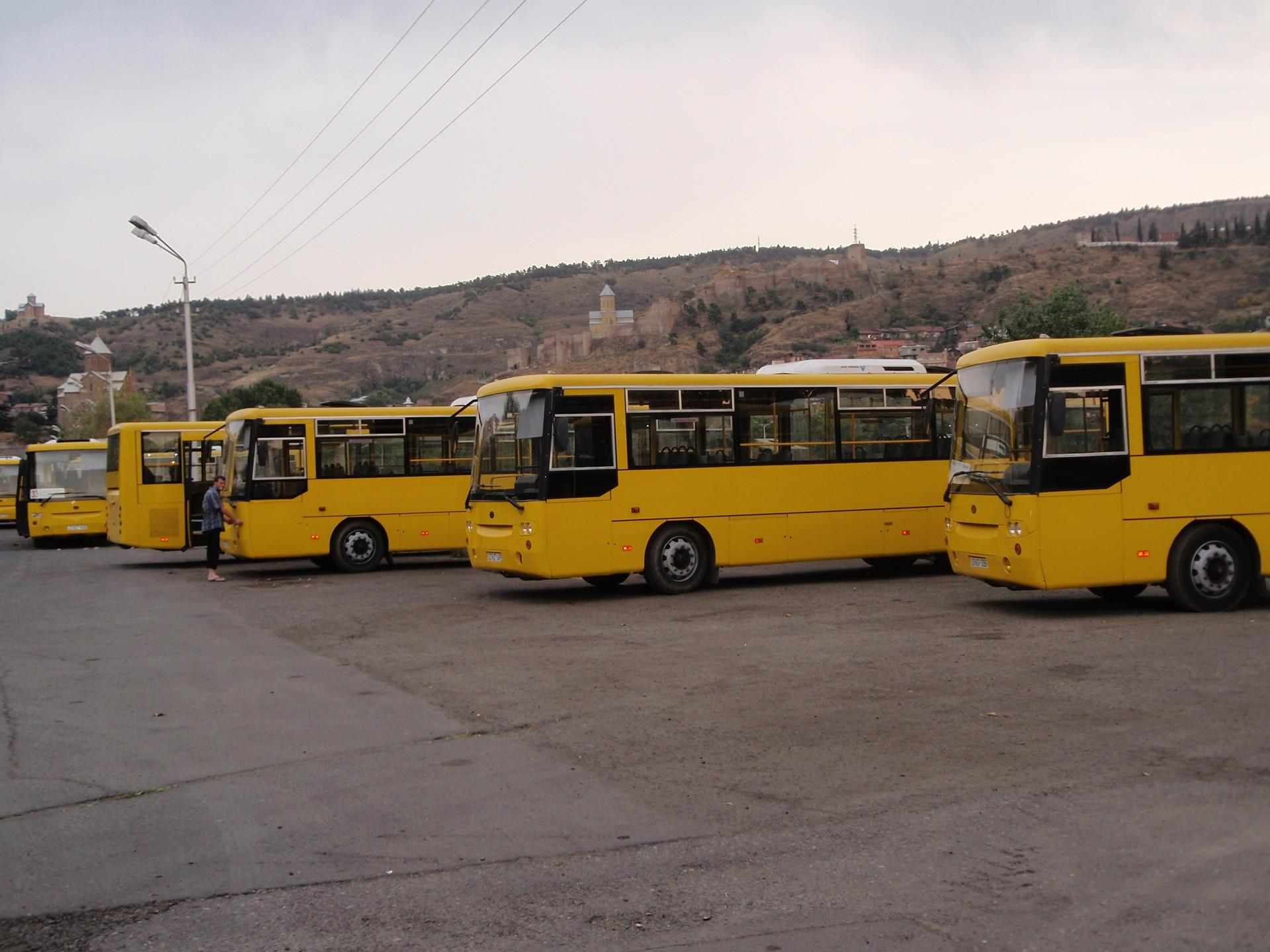 Modo de vida dos estudantes em Tbilisi, Geórgia, Parte II