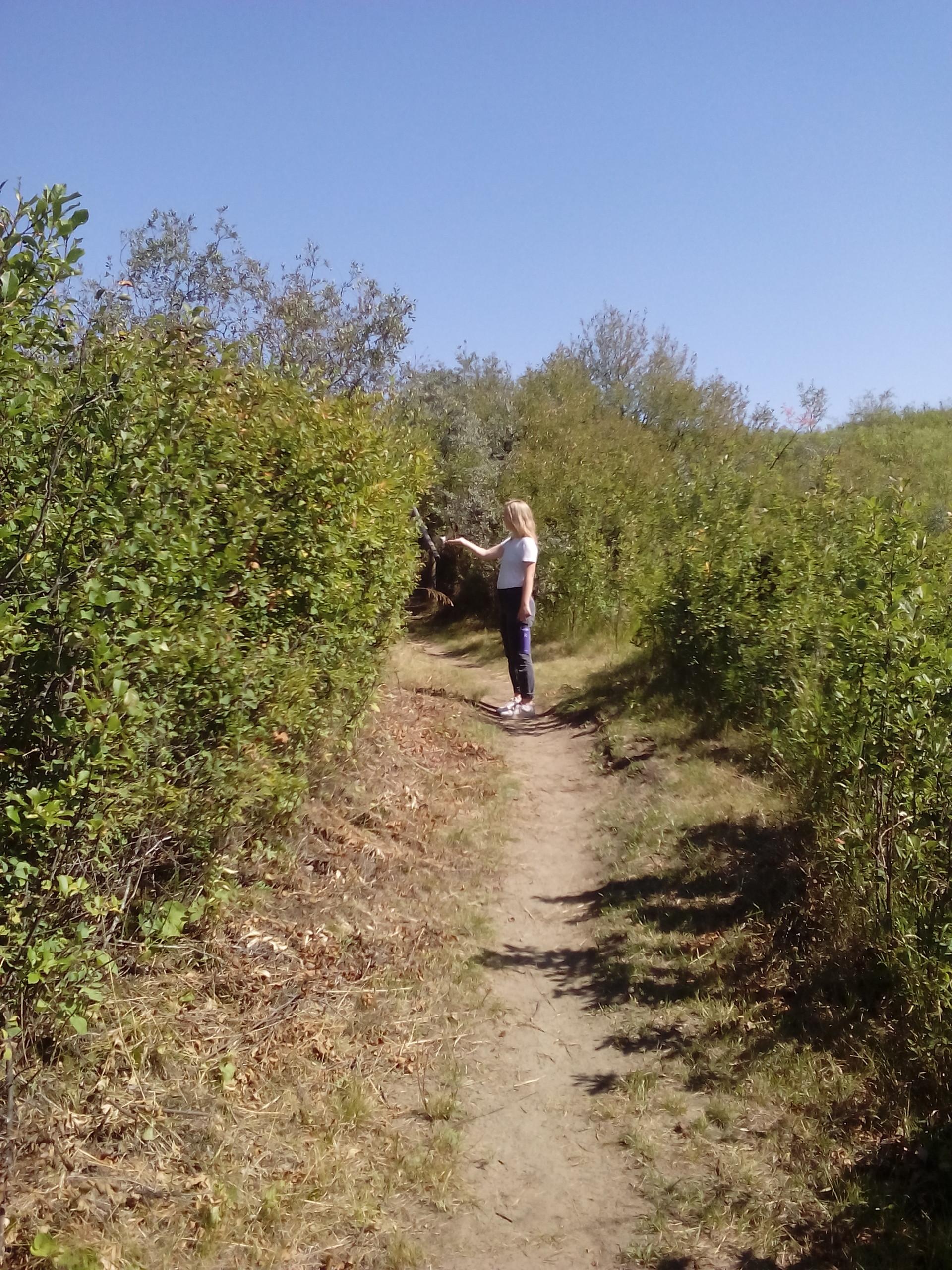 Nature Refuge in Beaver Creek