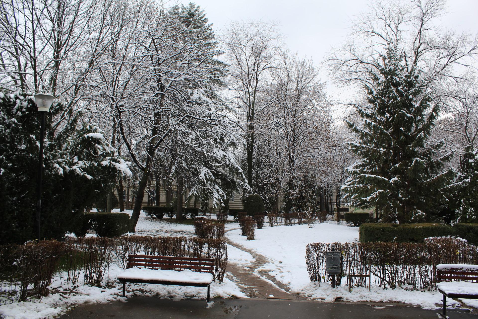 Neve pela primeira vez