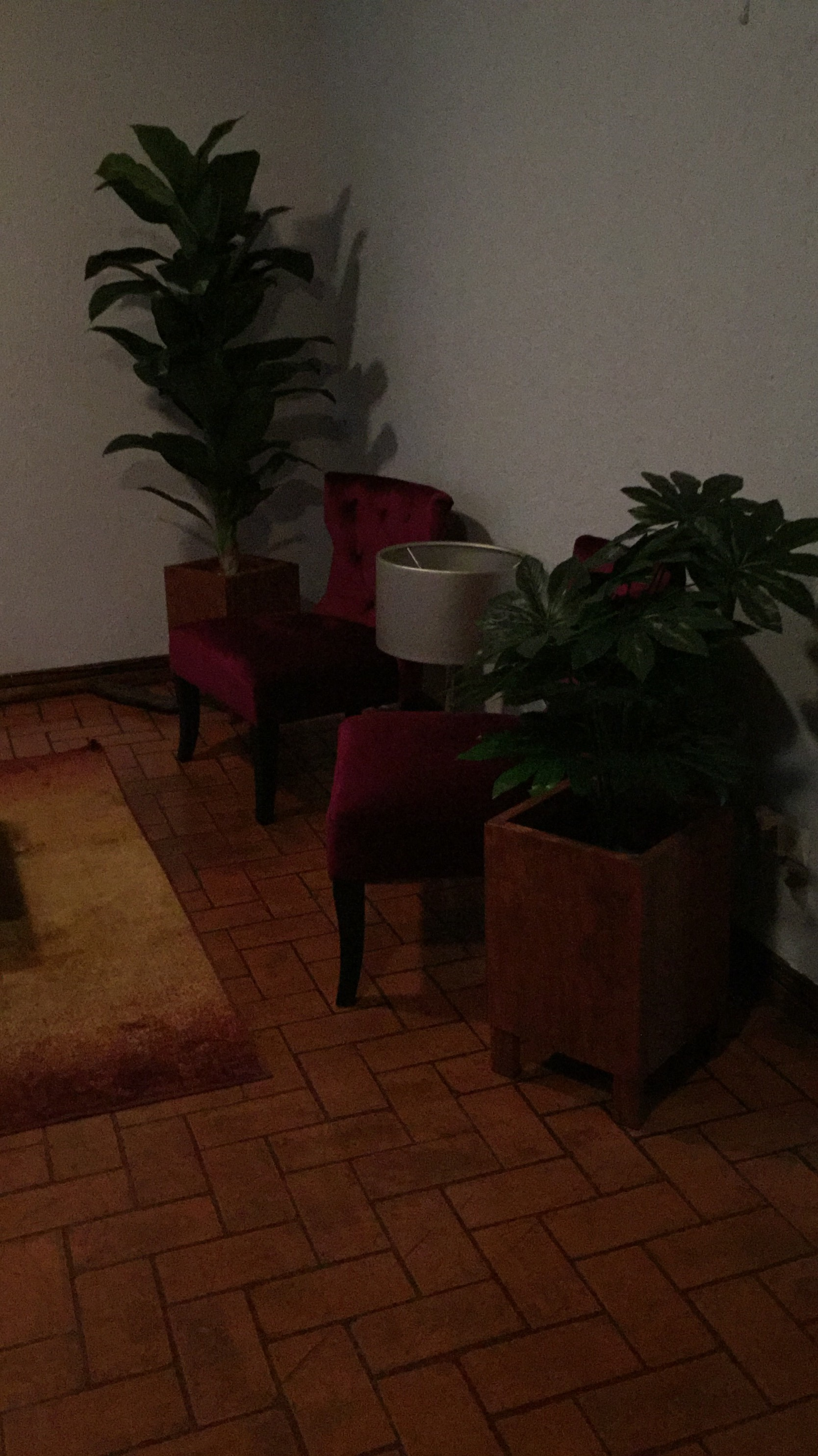 Nice Apartmen In San Jose Down Town I Am Interior Designer Room