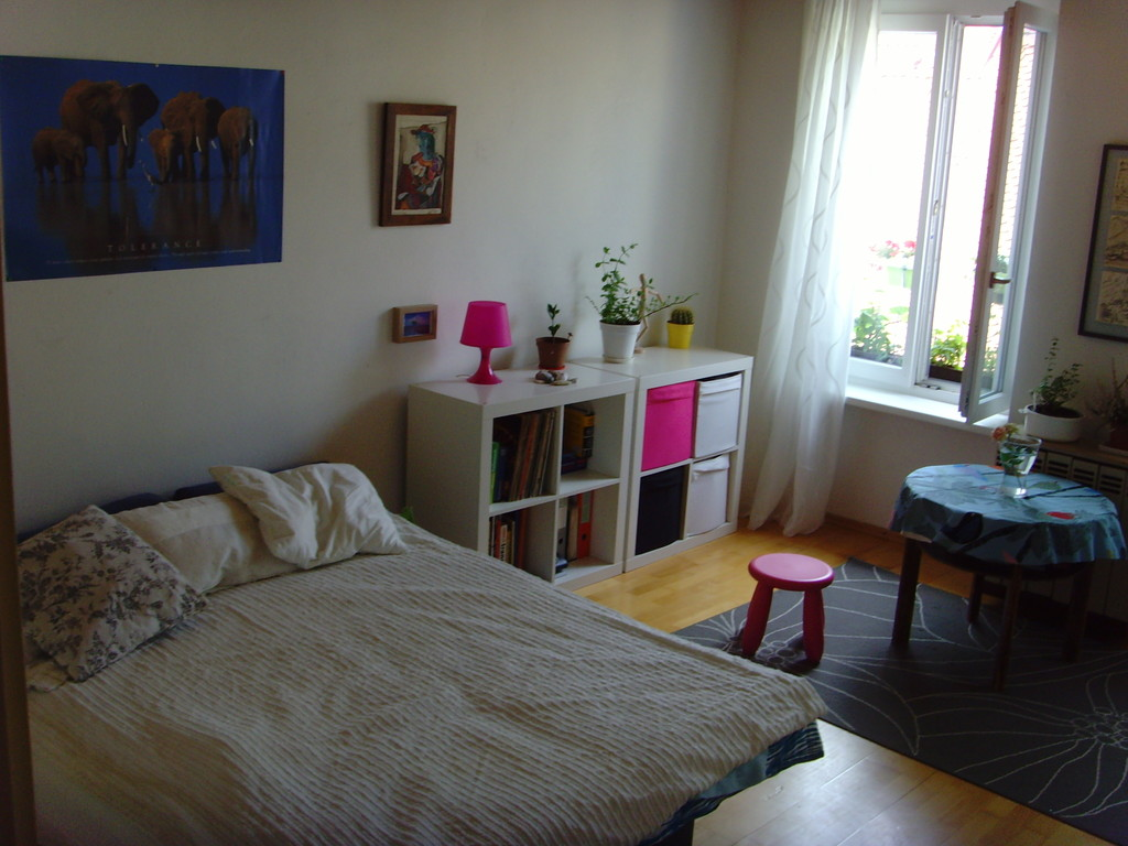 One Room Apartment In The Very Centre Of Graz Next To Tu