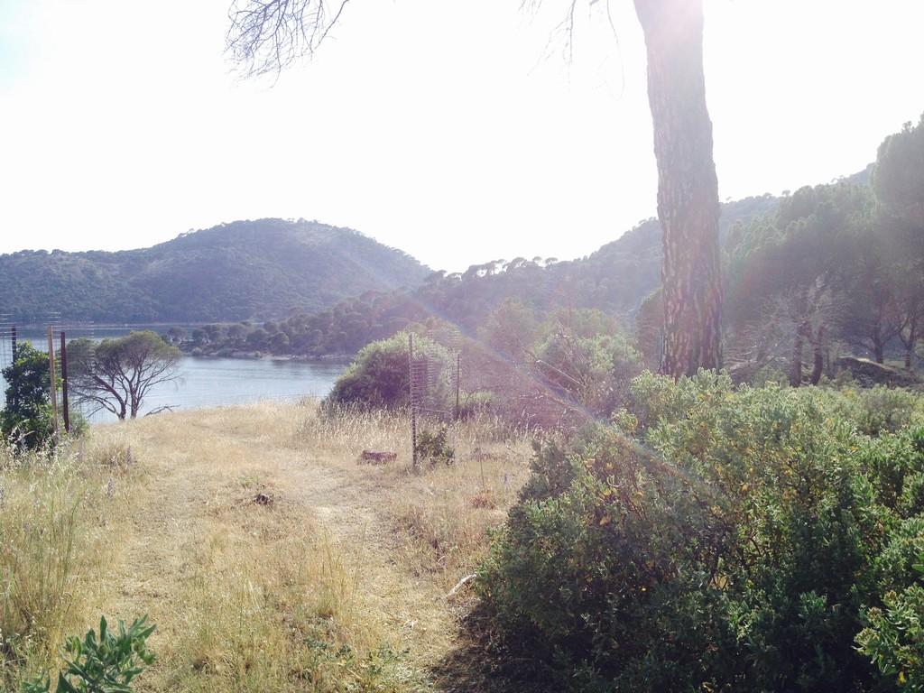 pantano-playa-de-san-juan-547b1a2c158680