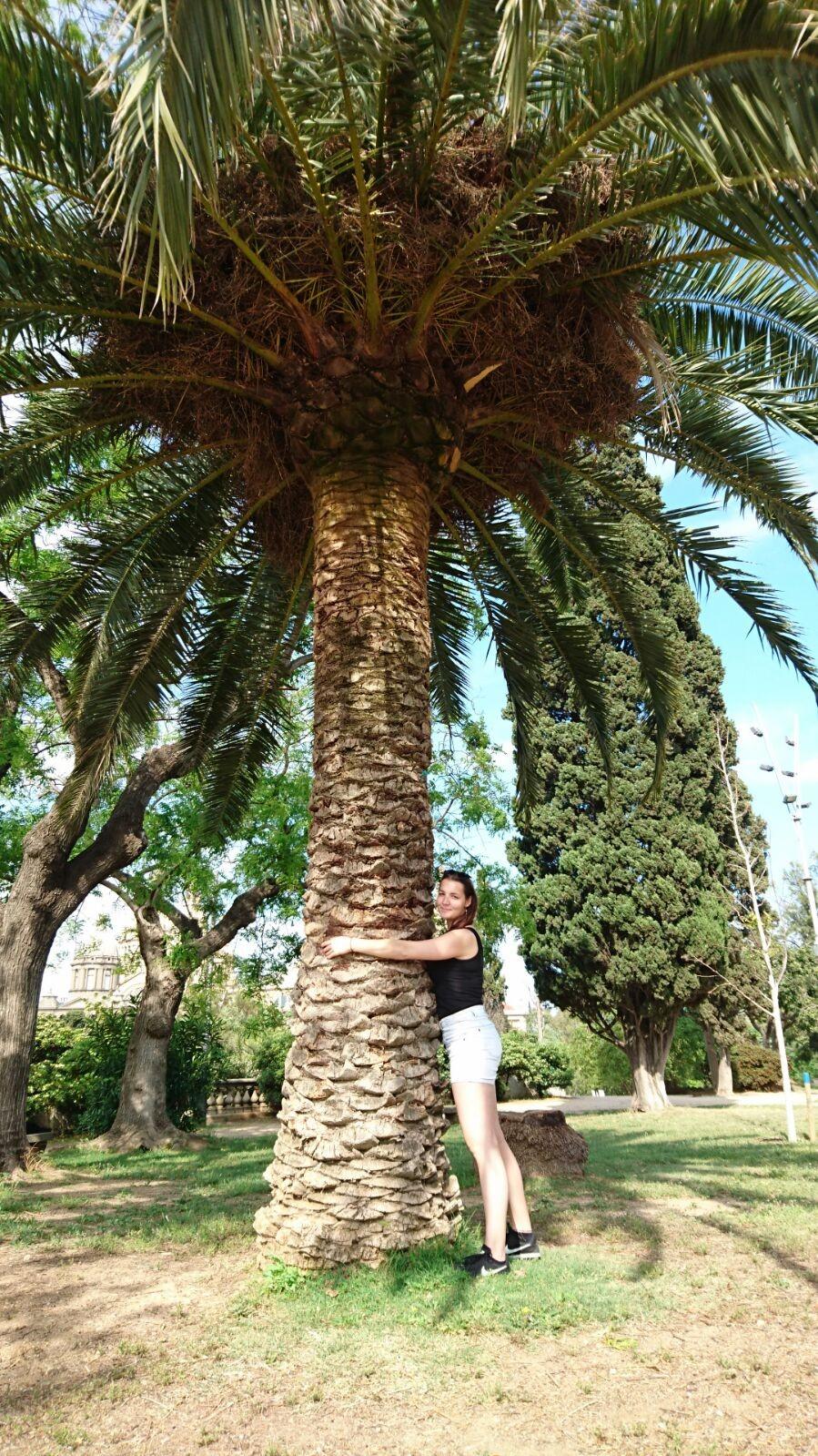 paradise-barcelona-569021c3a4997ef6c9392