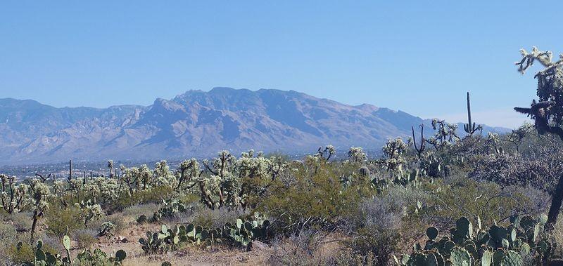 ¡Pásatelo en grande en Tucson!