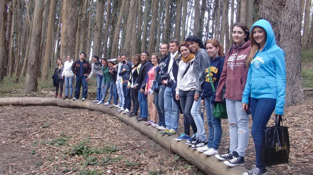 paseo-presidio-san-francisco-96ddc10bcf0