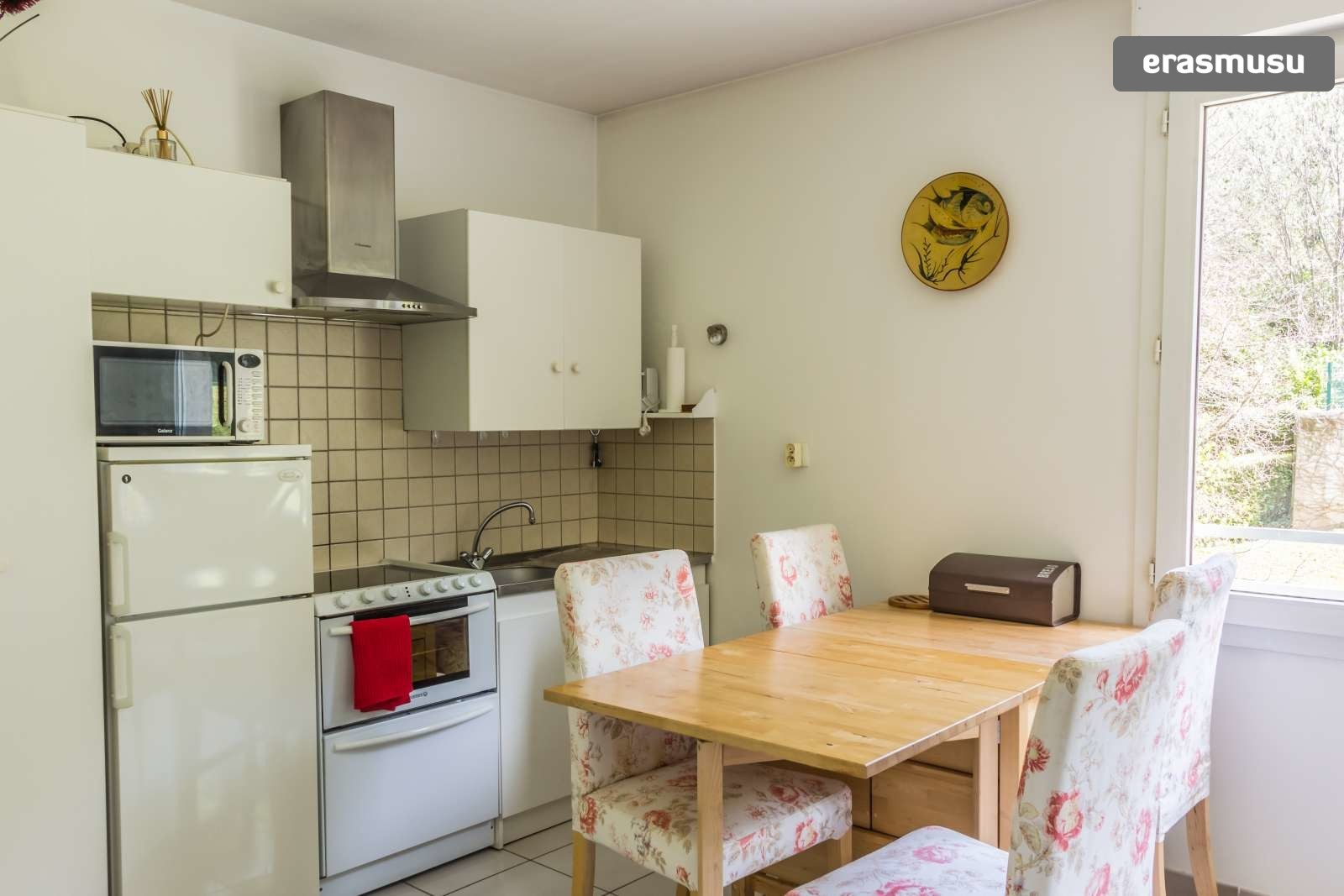 pet-friendly-studio-rent-9th-arrondissement-4044c262e3255285ad47