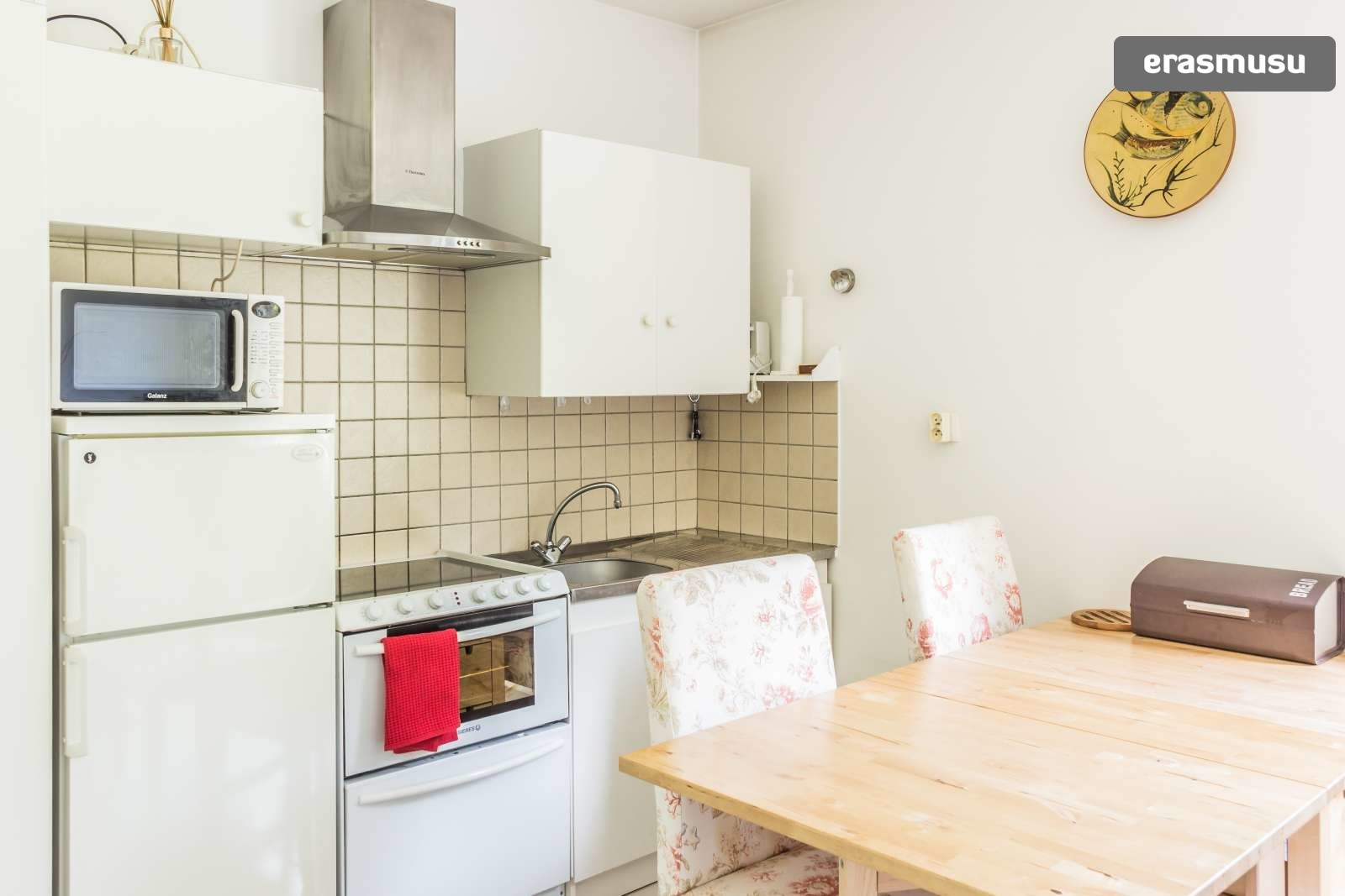 pet-friendly-studio-rent-9th-arrondissement-ac75832a3682f0d17863