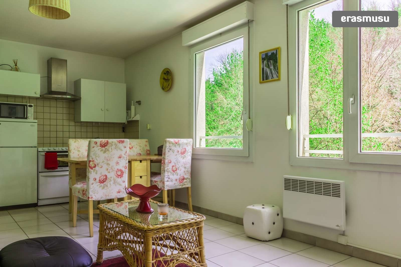 pet-friendly-studio-rent-9th-arrondissement-e40bac2e66f40fdeb1c4